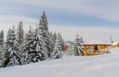 Högväxta granträd som täckas med snö och ett litet trähus Vinterdaglandskap Arkivfoton