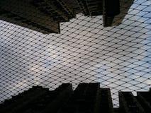 Högväxta himmelscappers Royaltyfria Foton