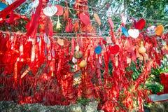 Högväxta träd dekoreras fullständigt med röda band många röda band som binds till träd askfat royaltyfri fotografi