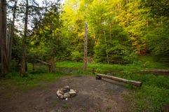 Högväxta träd runt om lägerbrand och campingplats Arkivbilder