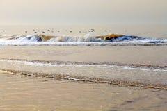 Högvatten på stranden med guld- vågor Arkivfoto