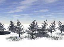 Höhe des Winters Stockbild