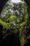 Höhle, Borneo Stockbild