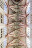 HÖHLE BOSCH, DIE NIEDERLANDE - 30. AUGUST 2016: Innenraum von gotischen Saint Johns Kathedrale in Den Bosch, Netherlan stockfotografie