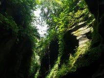Höhle, Vanuatu Stockfoto