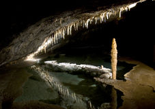 Höhlemonster Lizenzfreies Stockbild
