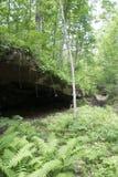 Höhleneingang im Wald Lizenzfreies Stockfoto