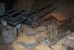 Höhlenfossilien Stockbilder