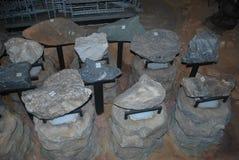 Höhlenfossilien Stockfotografie