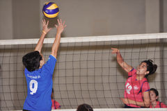 Höjdhopp som blockerar den över huvudet bollen i chaleng för volleybollspelare Arkivfoton