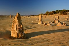 Höjdpunktöken på solnedgången Nambung nationalpark cervantes Västra Australien australasian Arkivbilder