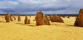 HöjdpunktökenNambung nationalpark västra Australien arkivfoto