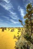 Höjdpunktöknen, Nambung nationalpark, västra Australien Arkivbilder