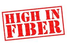 Höjdpunkt i fiber Arkivfoton
