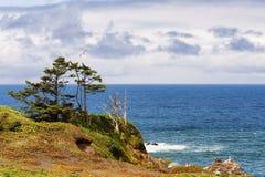 Höjdpunkt ovanför shorelinen på den Oregon kusten Royaltyfria Foton