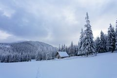 Höjdpunkten på bergen i skogen som täckas med snö där, är den ensamma gamla träkojan Arkivfoto