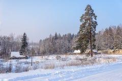 Höjdpunkten sörjer nära vintervägar Royaltyfri Fotografi