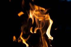 Höllen-Feuer Das Konzept der Natur Stockbilder
