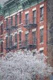 Höllen-Küchen-Gebäude und Schnee bedeckten Baum, Winter, New York Lizenzfreie Stockfotos