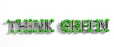 Hölzern denken Sie grüne Phrase mit grünem Gras Stockbilder