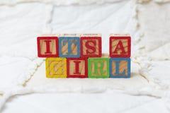Hölzerne Alphabet-Blöcke auf der seiner Steppdecken-Rechtschreibung ein Mädchen Lizenzfreies Stockbild