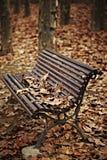 Hölzerne Bank mit Herbstblättern Stockfotos
