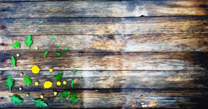 Hölzerne Beschaffenheit Auf Herbstblumen lizenzfreie stockfotos