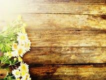Hölzerne Beschaffenheit Auf Herbstblumen stockbilder