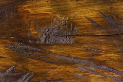 Hölzerne Beschaffenheit des geschnittenen Baumstammes, Nahaufnahme lizenzfreie stockfotografie