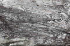 Hölzerne Beschaffenheit Graues Bauholzbrett mit verwitterten Sprungslinien Natürlicher Hintergrund für schäbiges schickes Design  Stockbilder