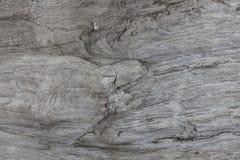 Hölzerne Beschaffenheit Graues Bauholzbrett mit verwitterten Sprungslinien Natürlicher Hintergrund für schäbiges schickes Design  Lizenzfreie Stockfotos