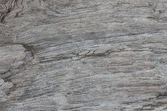 Hölzerne Beschaffenheit Graues Bauholzbrett mit verwitterten Sprungslinien Natürlicher Hintergrund für schäbiges schickes Design  Lizenzfreies Stockbild