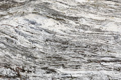 Hölzerne Beschaffenheit Graues Bauholzbrett mit verwitterten Sprungslinien Natürlicher Hintergrund für schäbiges schickes Design  Stockfoto