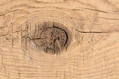 Hölzerne Beschaffenheit Hintergrund des hölzernen Brettes mit Knag, Abschluss oben lizenzfreies stockfoto