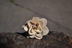 Hölzerne Blume Stockbild