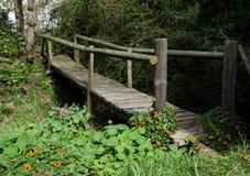 Hölzerne Bohlenbrücke auf einem Gebiet von Kapuzinerkäsen auf Weinkellerei-Ländern Lizenzfreie Stockfotos