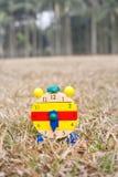 Hölzerne Borduhr auf Gras lizenzfreies stockfoto