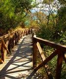 Hölzerne Brücke über einer Schlucht stockfotos