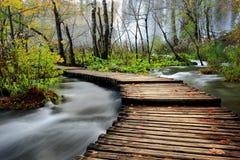 Hölzerne Brücke über Fluss Stockfotografie