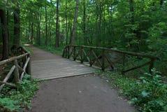 Hölzerne Brücke über Strom Stockbild