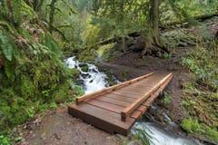 Hölzerne Brücke über Wahkeena-Nebenfluss-Spur Stockfotos