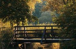 Hölzerne Brücke in der Natur Stockbild