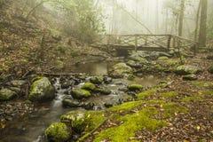Hölzerne Brücke in der Zeder Lizenzfreie Stockbilder