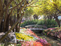 Hölzerne Brücke im Garten Stockfotos
