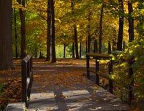 Hölzerne Brücke im Herbst Lizenzfreies Stockfoto
