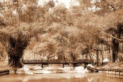 Hölzerne Brücke im Park Stockfotos