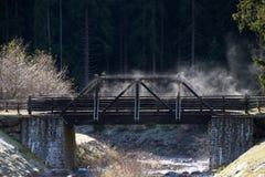 Hölzerne Brücke im Rabbinertal Stockbilder
