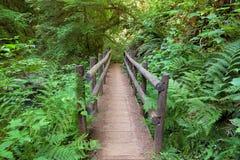 Hölzerne Brücke im süßen Nebenfluss fällt Wanderweg Stockbilder