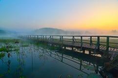 Hölzerne Brücke im Wald Stockfotos