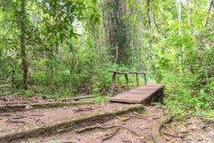Hölzerne Brücke im Wald Lizenzfreies Stockfoto